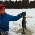 Öring fiske i Nävsjön