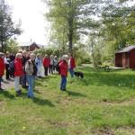 Okidevandringen på Kallsö, 20 maj 2012 009