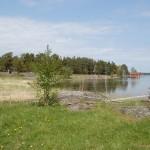 Okidevandringen på Kallsö, 20 maj 2012 012