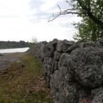 Okidevandringen på Kallsö, 20 maj 2012 067