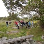 Okidevandringen på Kallsö, 20 maj 2012 070