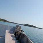 Okidevandringen på Kallsö, 20 maj 2012 160